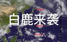 """台风""""白鹿""""预警升级"""